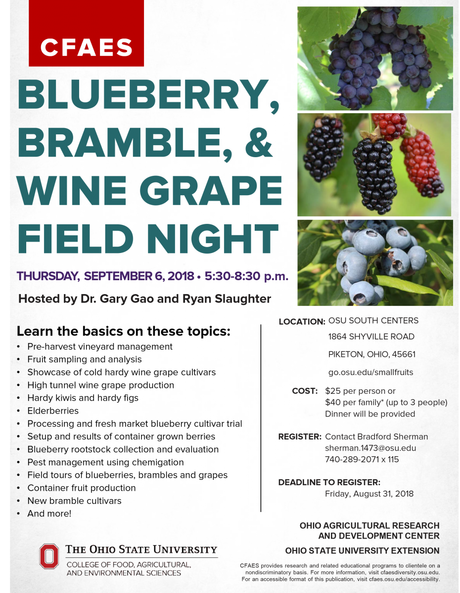 Blueberry, Bramble, & Wine Grape Field night