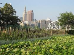 Columbus skyline and garden