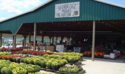 Bainbridge Produce Auction